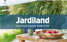 WizVille-et-Jardiland-1
